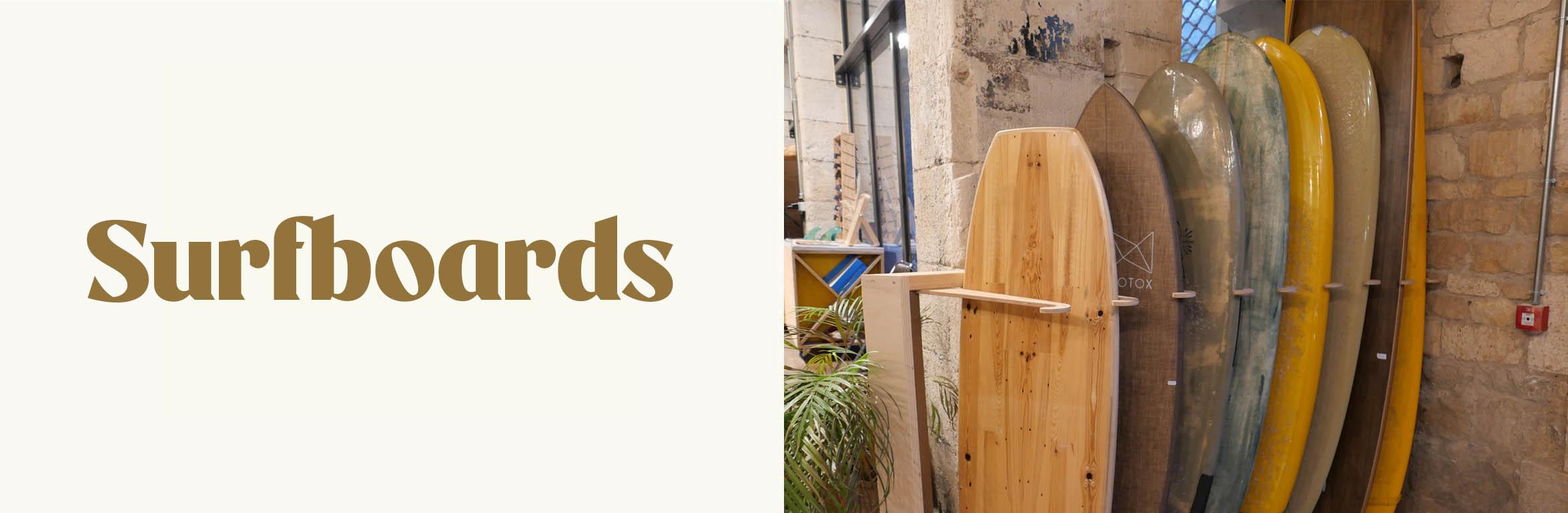 organic surfboards